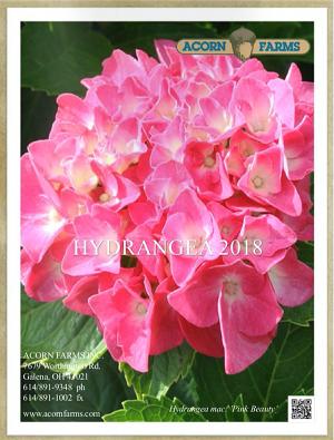 2017 Hydrangea Flipbook