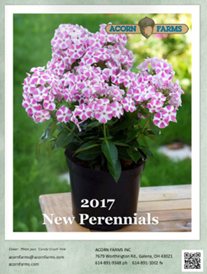 2017 New Perennials Flipbook