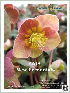 New Perennials Flipbook
