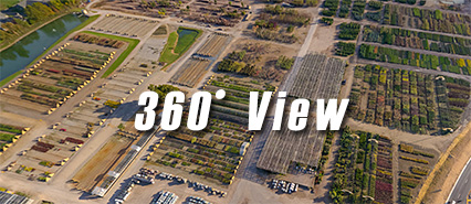 360 Overview of Acorn Farms - wholesale supplier of trees, shrubs, perennials, annuals, mums and poinsettias