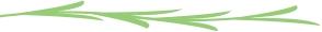 green line divider