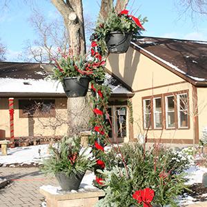 winter evergreen municipal insert