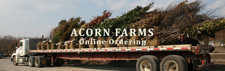 Acorn Farms